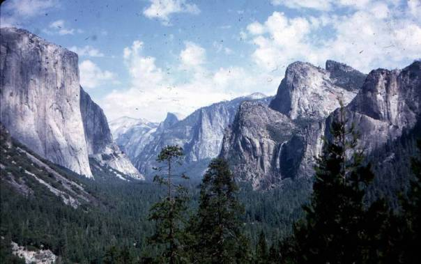 Yosemite-National-Park-yosemite-83378_865_543